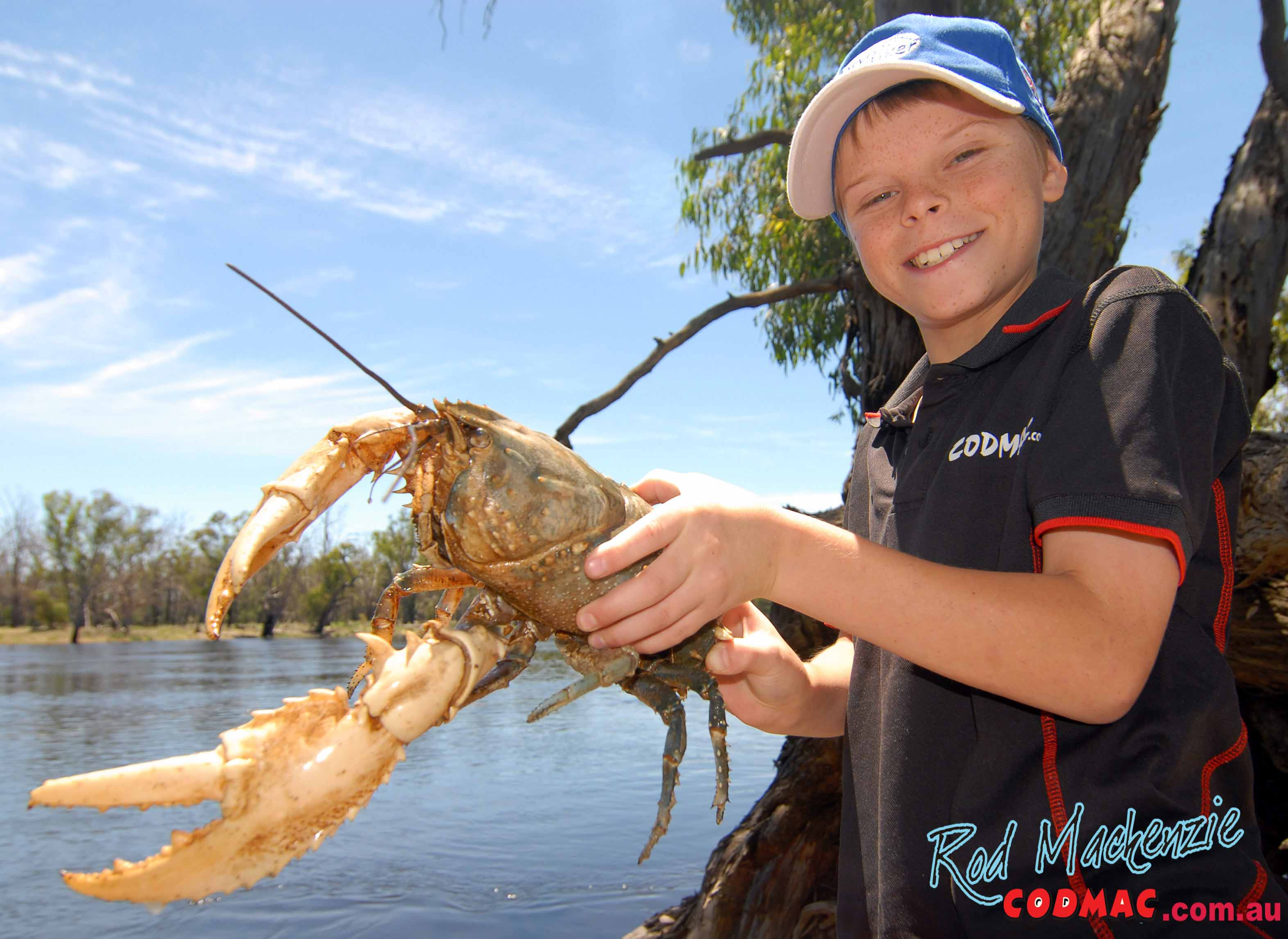 how to mail live spiny crayfish